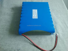 19.2v lifepo4 battery pack