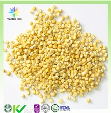 freeze dried yellow corn for animal consumption
