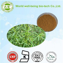 High quality best price Belvedere Fruit Extract /Fructus Kochiae extract/ broom cypress fruit extract