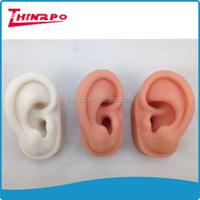 customized silicone human ear model acrylic jewelry display ear 3D model