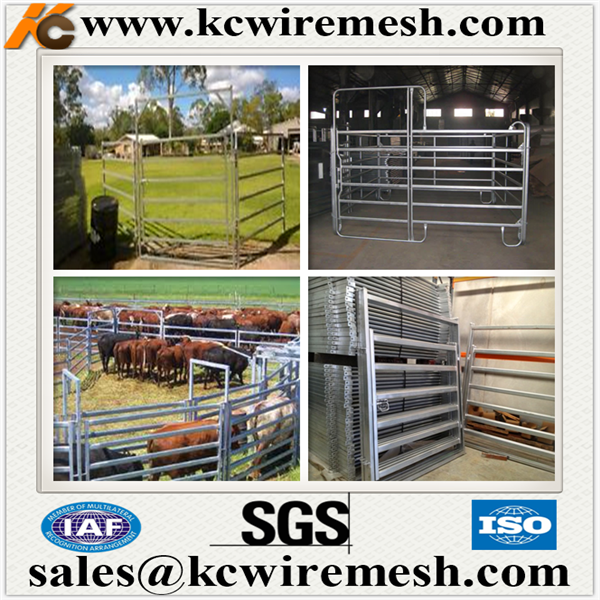 Factory!!!!!!! Kangchen Heavy duty horse/cattle fence panel galvanized square pipe corral panel