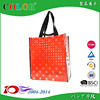 Low Price Pp Woven Cooler Bag wenzhou factroy