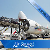 Fast Air Sea Freight Forwarder Transportation