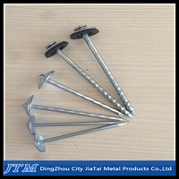 High quality galvanize roofing nail in umbrella head with plastic/rubber washer
