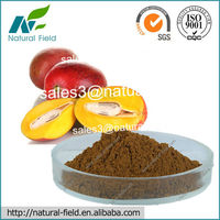 Top Quality African Mango Seed Extract Powder 10:1 for Weight Loss