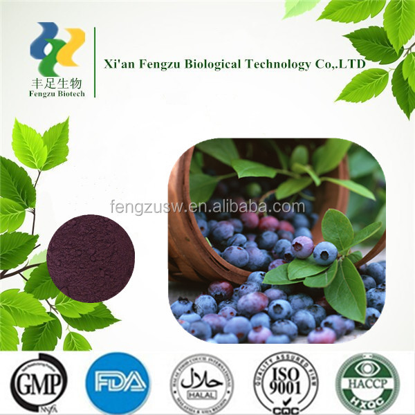 Top quality Fresh Bilberry Extract Anthocyanidins 25% 32% 36%