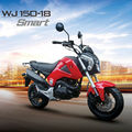 New cheap powerful dirt bike for adults(WJ150-18)