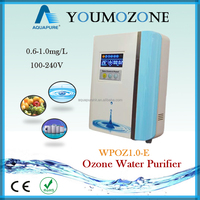 Safe and efficient household ozone vegetable washer