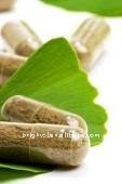 Pure Nature Gingko Biloba Leaf Extrat(Nutraceutical Ingredients)