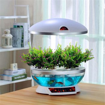 Acrylic round fish tank buy fish tank round fish tank for Acrylic vs glass fish tank
