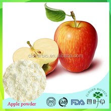 factory supply pure apple fruit juice concentrate extract powder