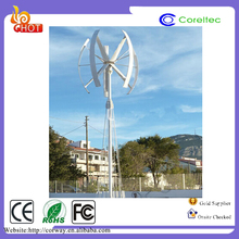 1KW Small Vertical shaft Magnetic Wind Turbine Generator Silent and Safe System
