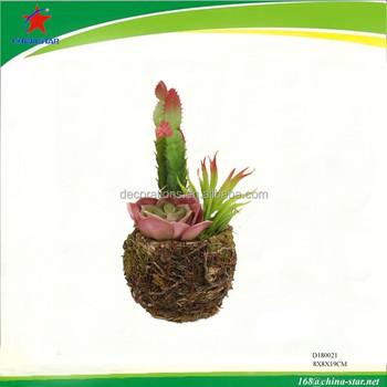 artificial succulent plants potted