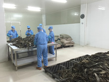 AD Sun Drying Process and Dried Seaweed Nori for Soup and Snacks