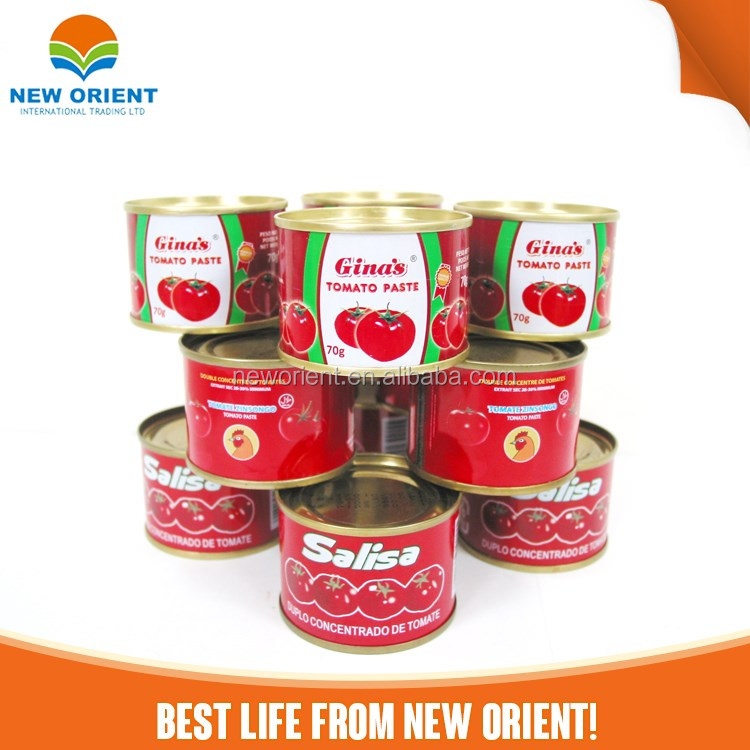 oem brand tomato paste/ketchup/sauce in bag package dubai halal food flavor