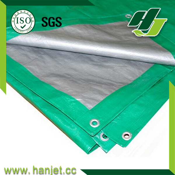 Canvas fabric sheet/PE tarpaulin for cover