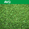 AVGrass autum artlawn SGS CE Golf Tee Grass