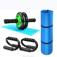 China factory Wholesale OEM NBR mat, AB wheel, push up bar exercise set Gym Fitness Equipment Set For Home Exercise