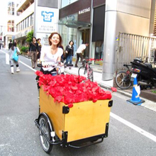 Europe 3 wheel cargo bike for sale / family reverse trike with front cargo box /adult cargo bicycle UB9005