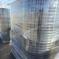 Alibaba China Anping factory direct supplier galvanized welded wire mesh in roll for bird cages