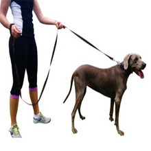 Pet Supplies for Dogs Leashes Dog Training Leash 8 foot