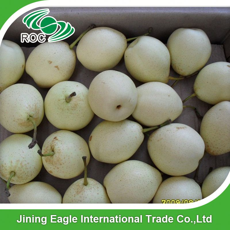 Asian supplier fresh ya pear with good quality from china