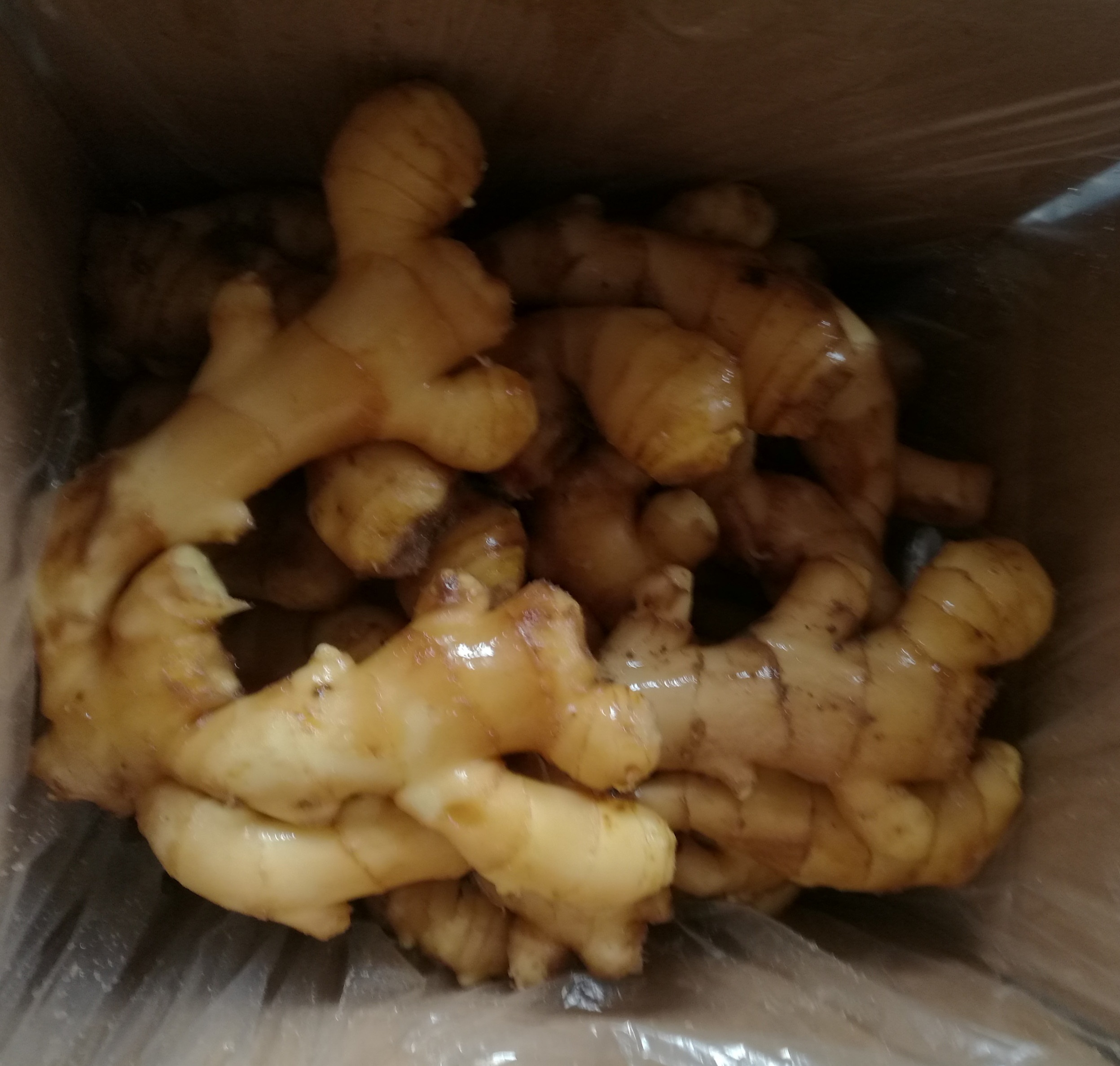 Bulk fresh/air dry ginger of good quality
