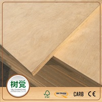 CARB 2 FSC Natural Birch Plywood