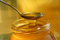 Natural honey from india