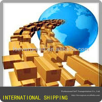 CHINA-NEW DELHI, India best shipping rate/shipping company/freight forwarder/shipping agent/logistics services