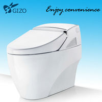 smart toilet bidet pedestal basin ceramic anglo indian water closet