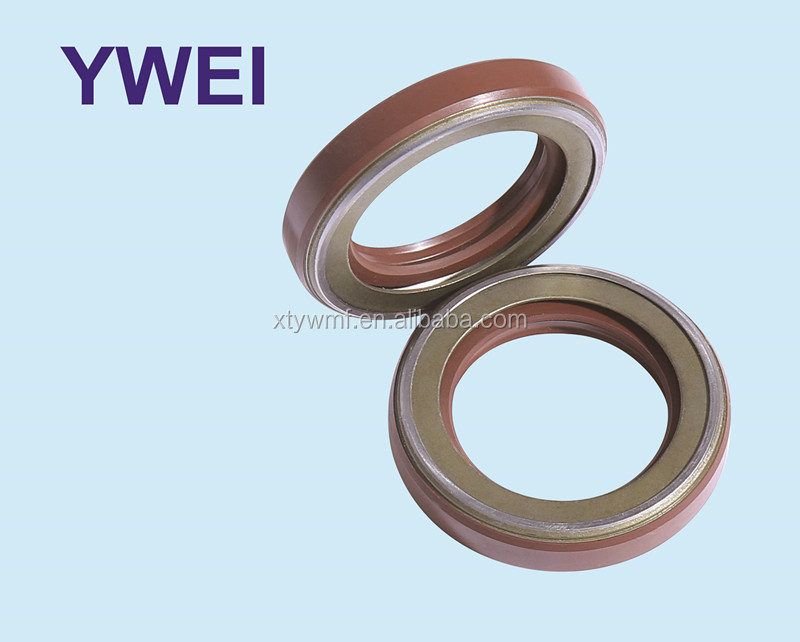 Single lips viton oil seal TCN framework Oil Seal