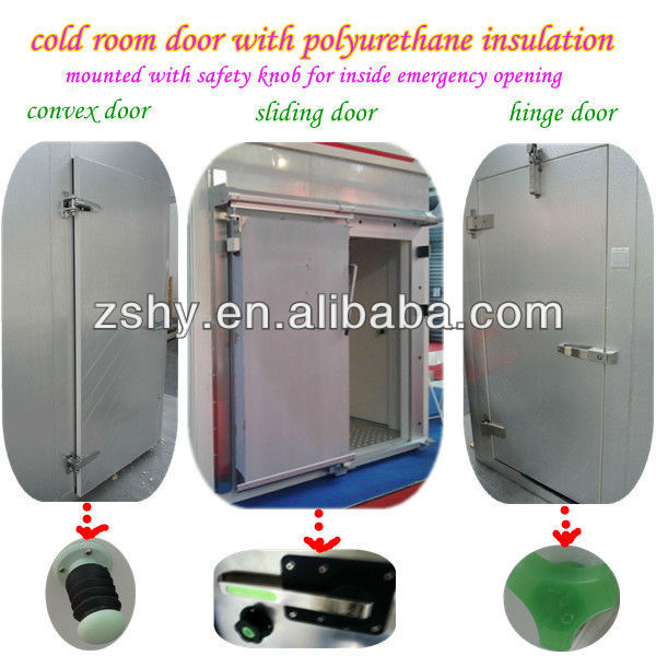 Large size industrial freezer room for sea food & frozen chicken