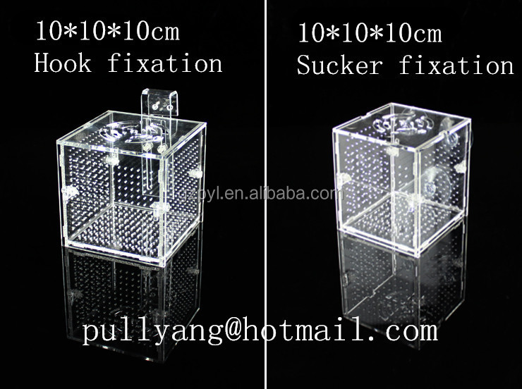 separation isolate hatch box fish aquarium small guppy discus fish transparent arcylic material rubber