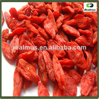 Factory Supply Pure Natural Chinese Most Salable Goji Berry/Goji/Wolfberry