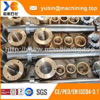 Steel Parts(Forging and CNC Machining)