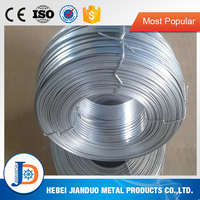 2.0mm width 0.8mm thickness(2.0mm*0.8mm) flat iron galvanized Steel stitching wire for book