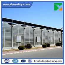 Venlo Style Roof Agricultural Polycarbonate Sheet Greenhouse