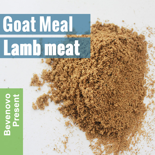 Halal Meat Bone Meal By Lamb Goat 65% Protein
