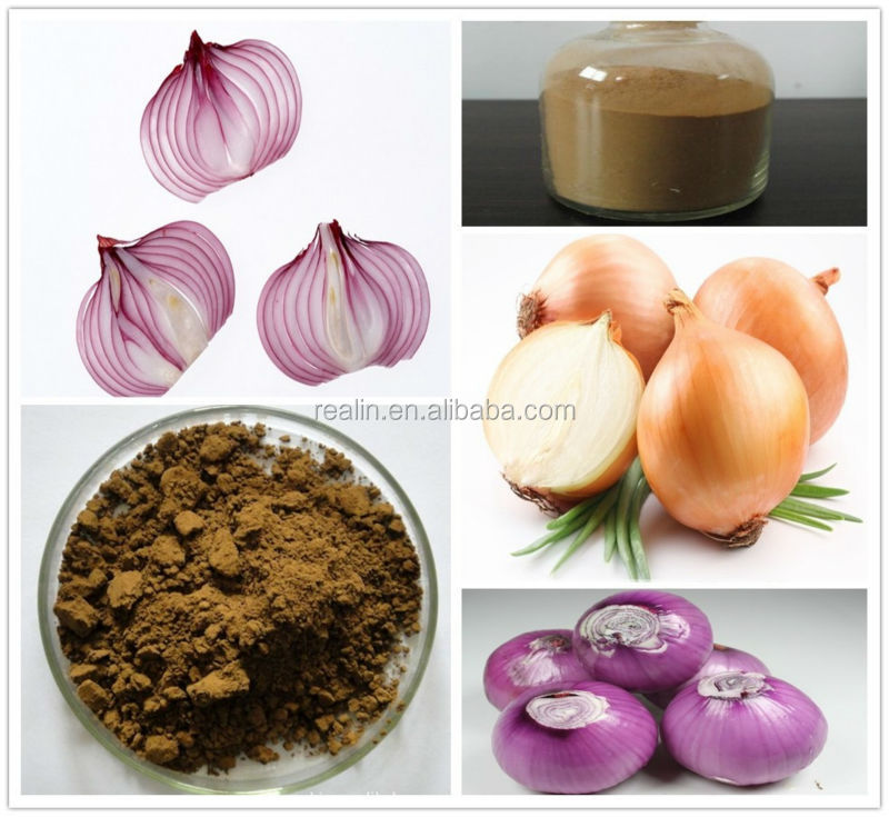 100% natural plant onion extract brown powder quercetin 98%