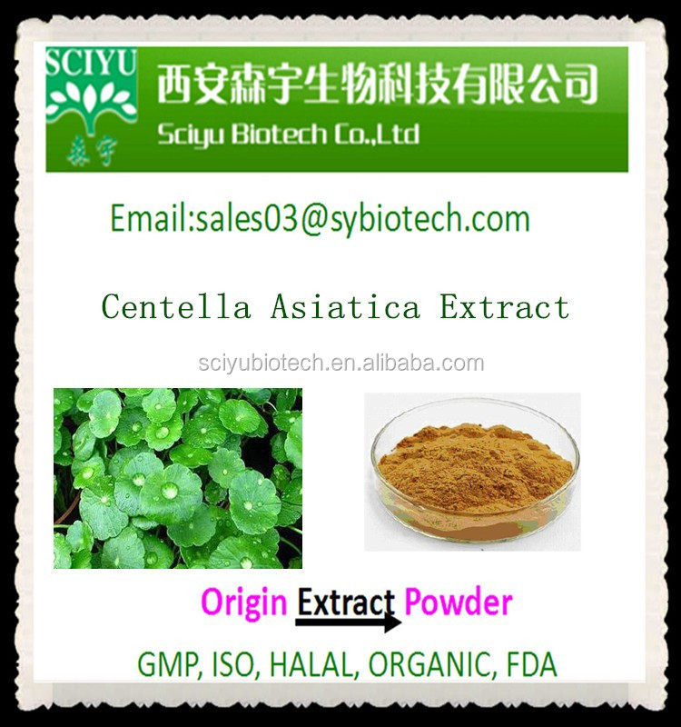 Gotu Kola Extract Centella Asiatica Extract Powder Asiaticoside Asiatic acid