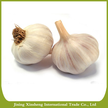 Organic New China fresh white garlic