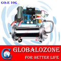 10G-60G water cooling enamel tube ozone generator kits for water purifier