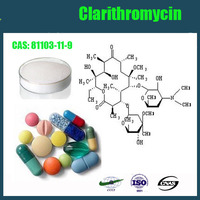 High Quality Clarithromycin 81103-11-9 Lowest Price Hot Sales Fast Delivery From Leader Biochemical Group BULK STOCK!!!!!!