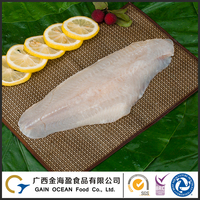 Fresh frozen fish seafood company supply product channel catfish fillets