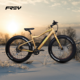 2017 hot selling fat tire electric bike 48V 500W 750W electric snow bike beach bike with hidden battery in frame