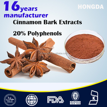 High Quality Cinnamon Cassia Extract Powder Polyphenols 20%