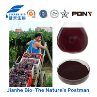 Factory directly supply 100% natural high proanthocyanidins Grape Seed Extract
