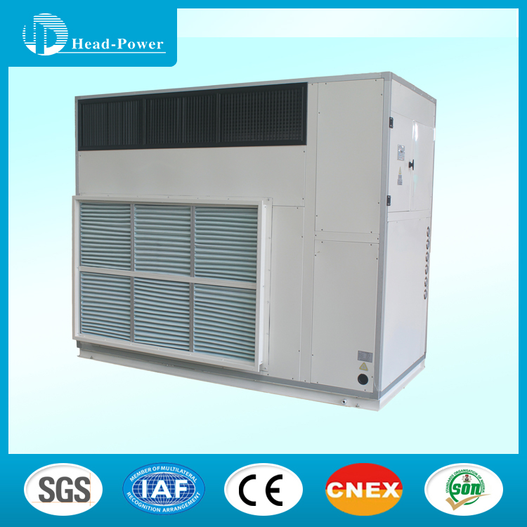 Industrial dehumidifier petrochemical industries 30kg/h dehumidification desicant dehumidifier