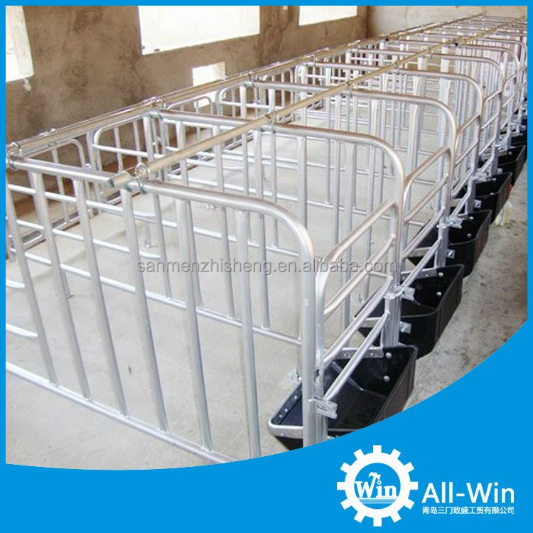 factory supply pig equipment sow gestation stall for pigs